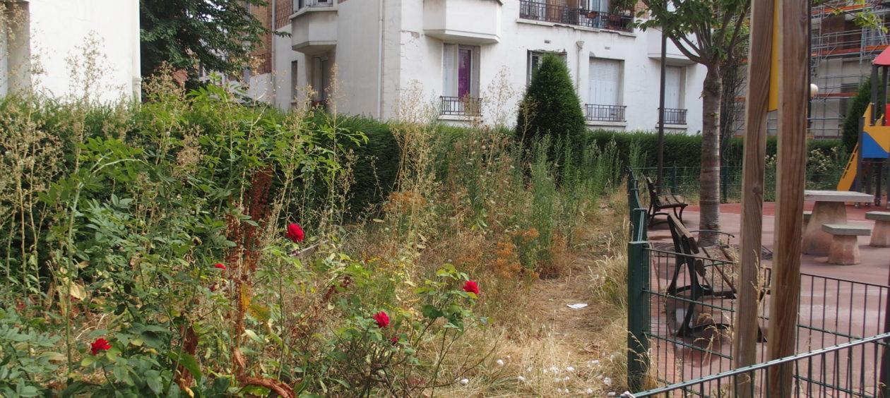 La métamorphose des villes sans pesticides