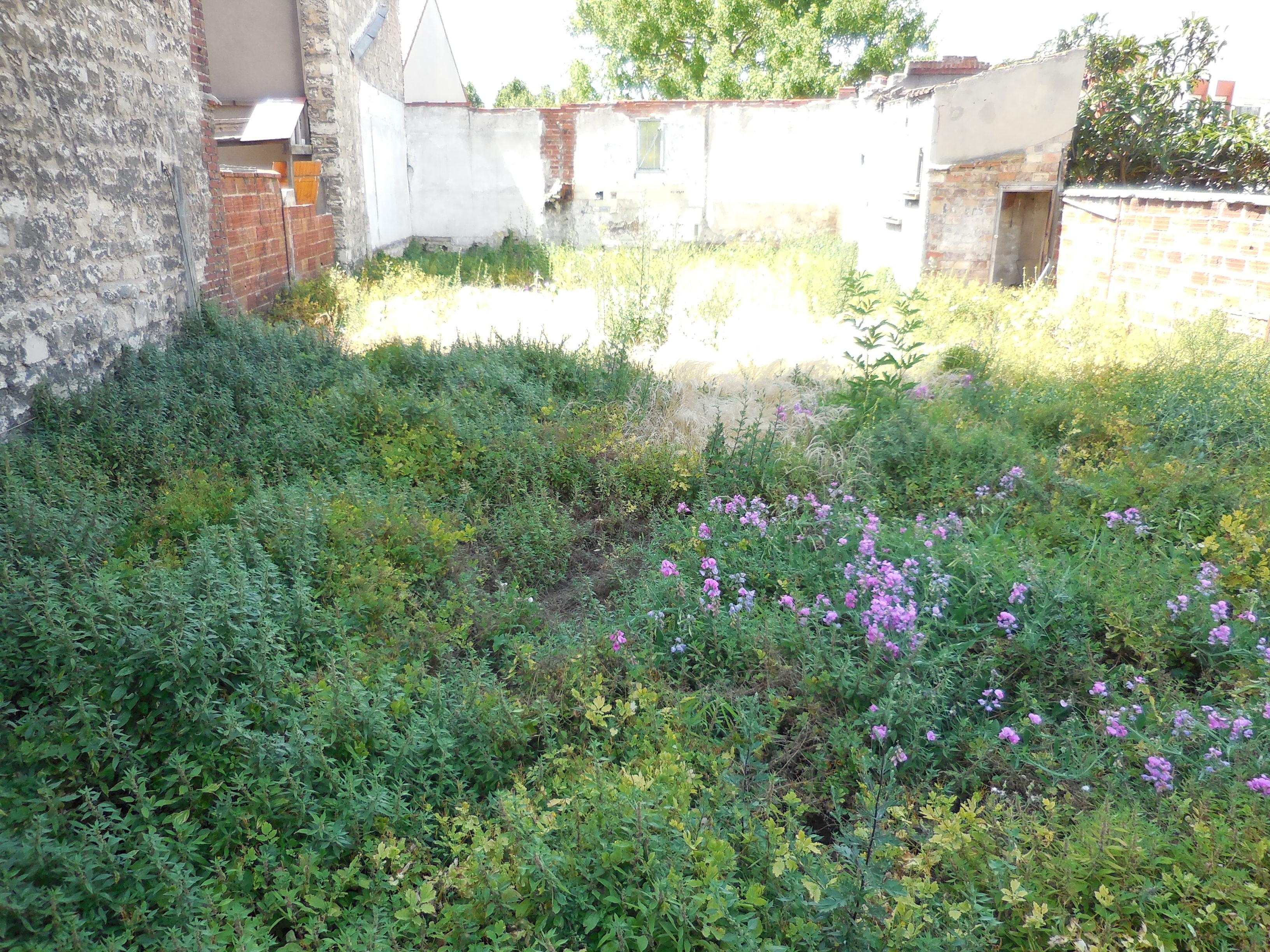 Comment créer mon jardin partagé ? (1/3) : Le lieu | La Ville Pousse