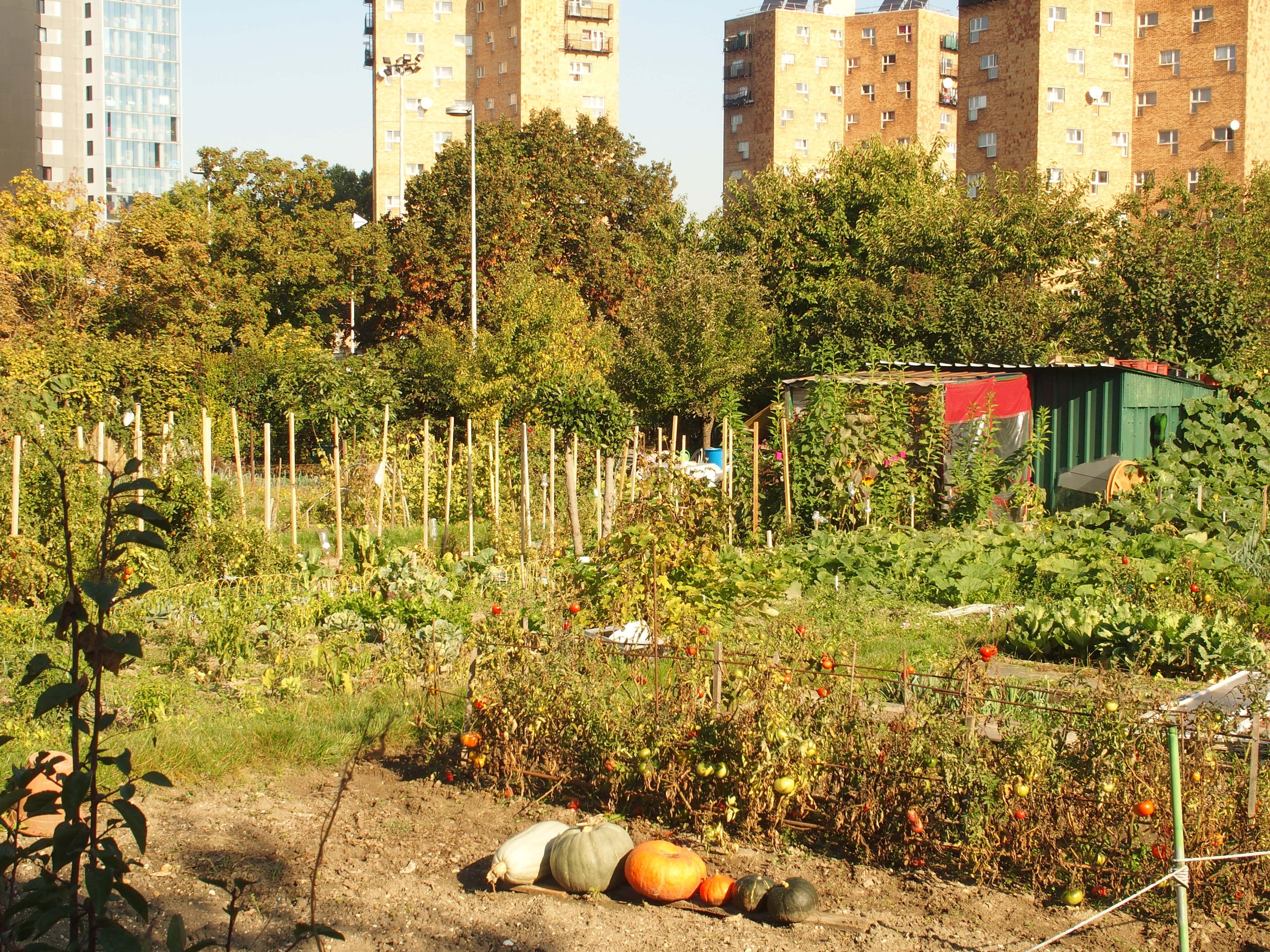 Les jardins des vertus aubervilliers l esprit de for Les jardins de la ville