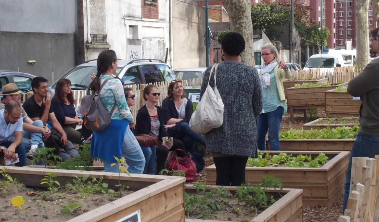 Mixité sociale dans les jardins partagés : conseils et points de vigilance