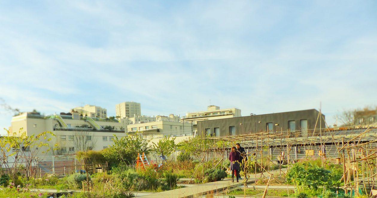 Après le Jardin solidaire, place au Jardin sur le Toit !