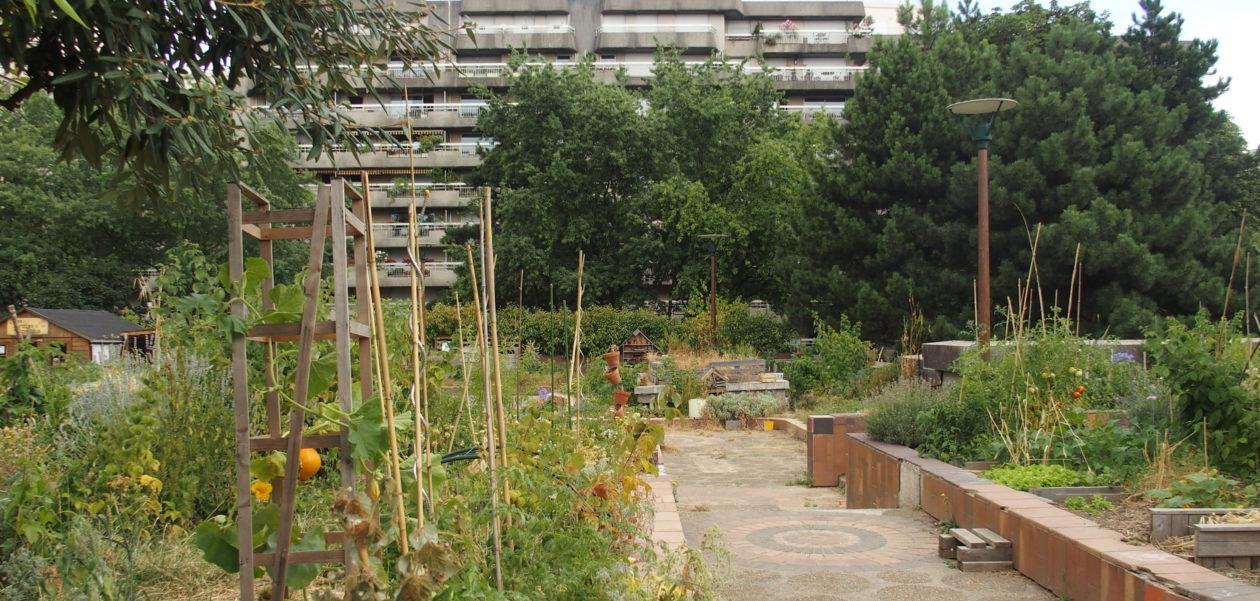 Comment créer mon jardin partagé ? (1/3) : Le lieu
